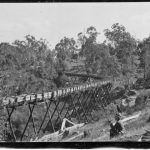 Timber fluming supplying historic hydroelectric power station at the Gara River near Armidale NSW.