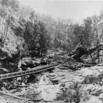 Weir on Styx River NSW about 1908