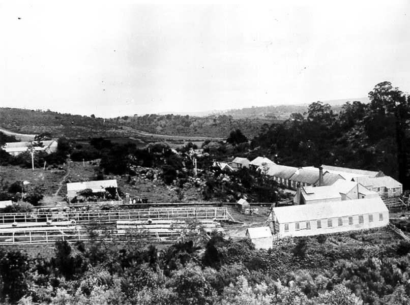 Historic photo of Waverley Woollen Mills.